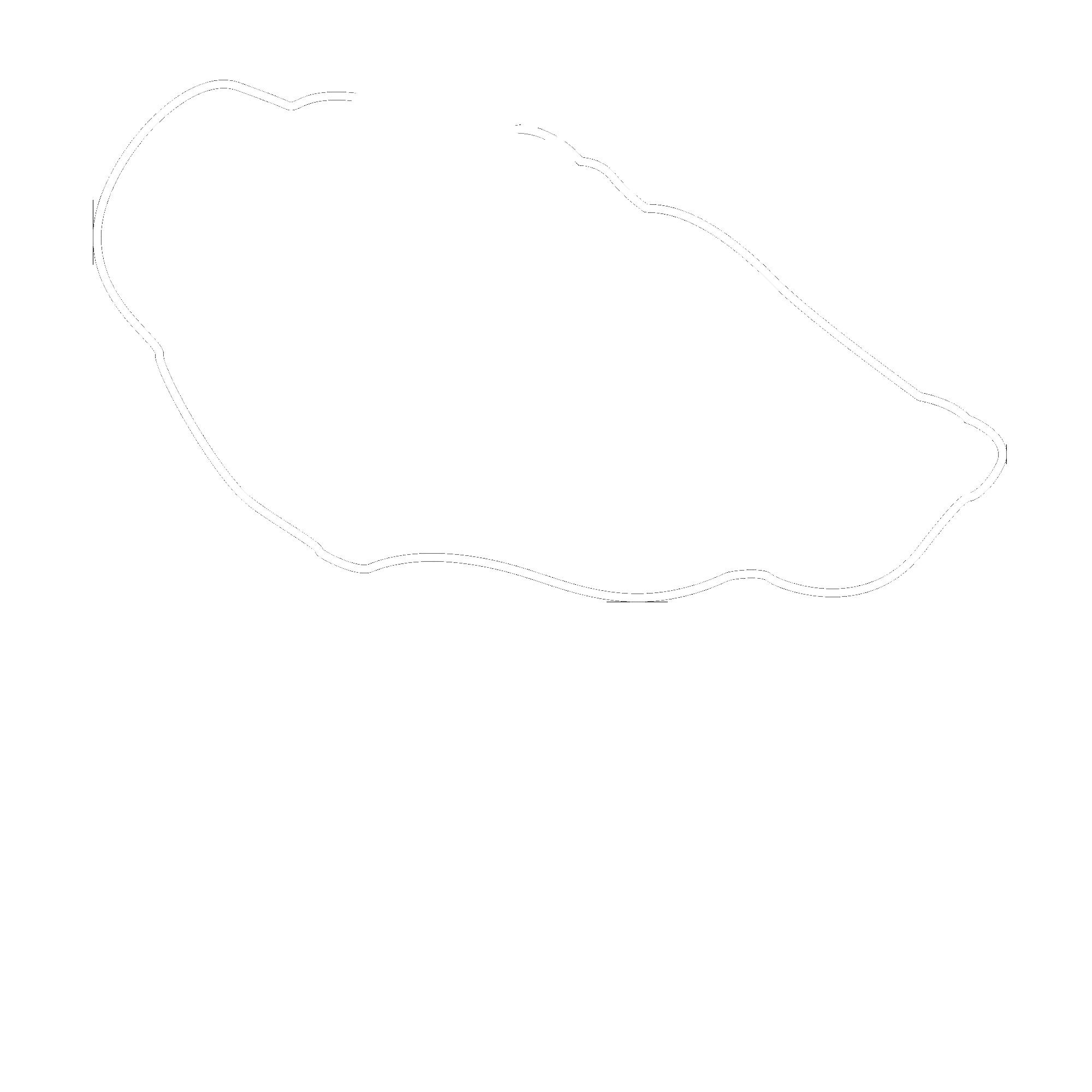 White Rat Tattoo - Studio tatuażu Warszawa