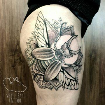 Studio tatuażu Warszawa Agata Kacperczyk tatuaż żuk