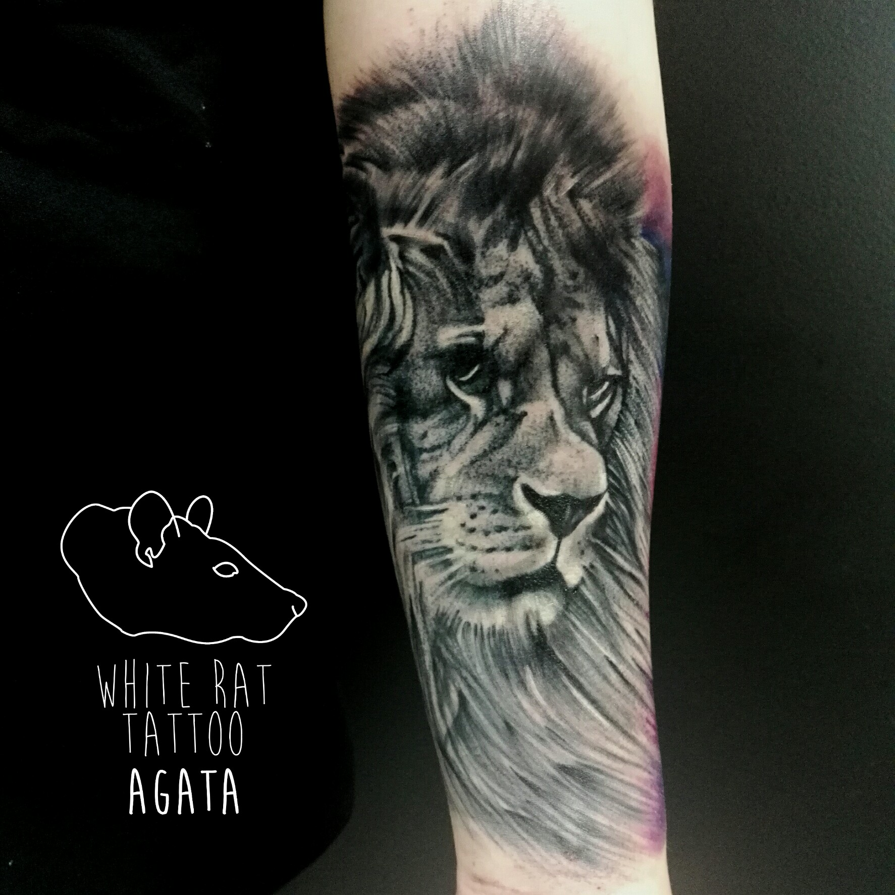 Studio Tatuażu Warszawa Agata Kacperczyk Tatuaż Lew White