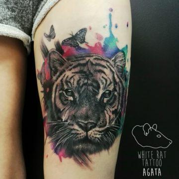 Studio tatuażu Warszawa Agata Kacperczyk tatuaż tygrys