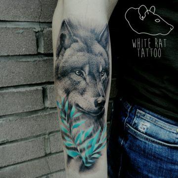 Studio tatuażu Warszawa Agata Kacperczyk tatuaż wilk