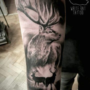 Studio tatuażu Warszawa Krzysztof Jakubowski tatuaż jeleń