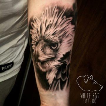 Studio tatuażu Warszawa Krzysztof Jakubowski tatuaż orzeł