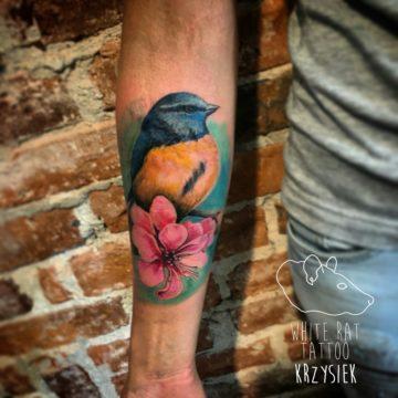 Studio tatuażu Warszawa Krzysztof Jakubowski tatuaż ptak 2