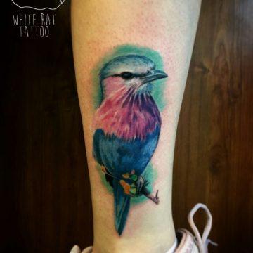 Studio tatuażu Warszawa Krzysztof Jakubowski tatuaż ptak