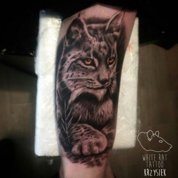 Studio tatuażu Warszawa Krzysztof Jakubowski tatuaż ryś