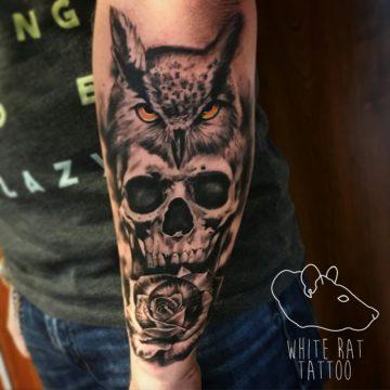 Studio tatuażu Warszawa Krzysztof Jakubowski tatuaż sowa i czaszka