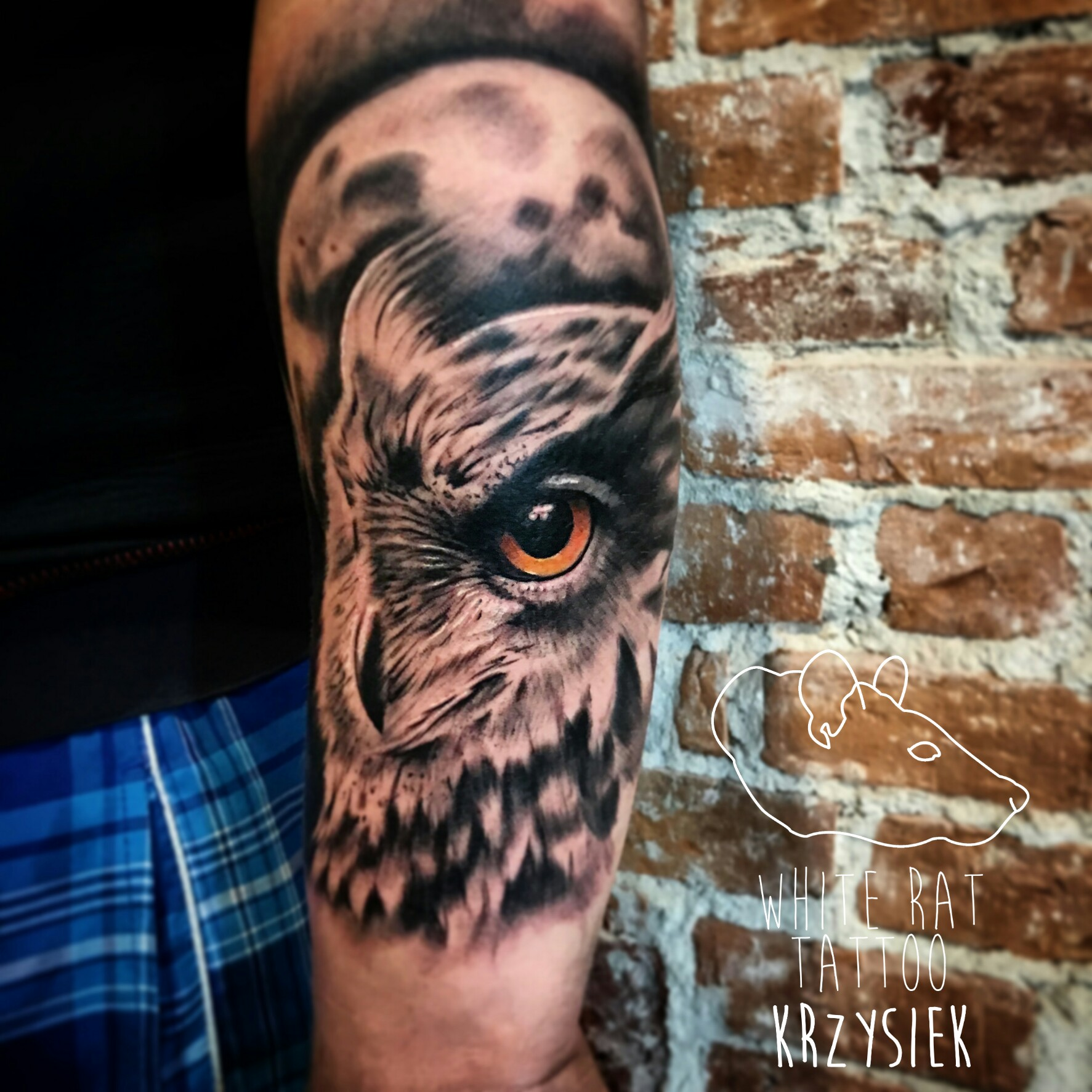 Studio Tatuażu Warszawa Krzysztof Jakubowski Tatuaż Sowa White Rat