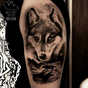 Studio tatuażu Warszawa Krzysztof Jakubowski tatuaż wilk 2