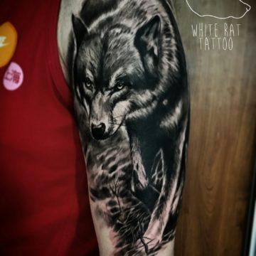 Studio tatuażu Warszawa Krzysztof Jakubowski tatuaż wilk
