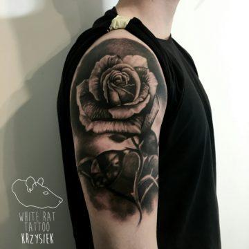 studio-tatuazu-warszawa-krzysztof-jakubowski-tatuaz-roza