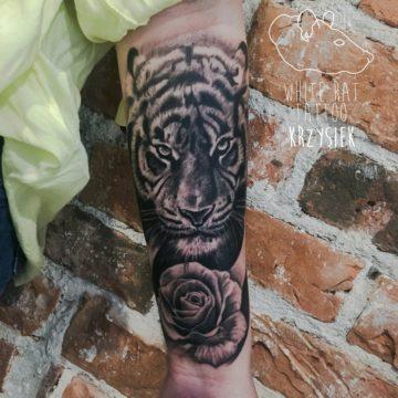 studio-tatuazu-warszawa-krzysztof-jakubowski-tatuaz-tygrys-roza