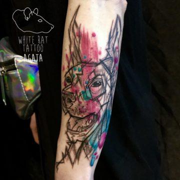 Agata Kacperczyk Studio Tatuażu Warszawa White Rat Tattoo Tatuaż Doberman Watercolor