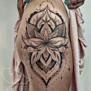 Agata Kacperczyk Studio Tatuażu Warszawa White Rat Tattoo Tatuaż Lotos Mandala