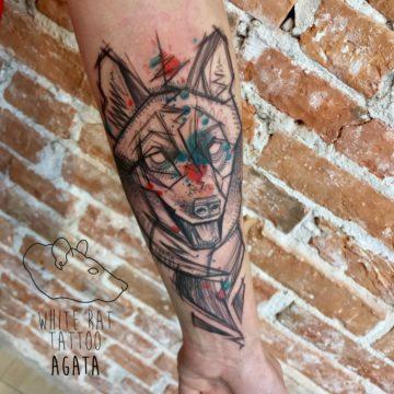 Agata Kacperczyk Studio Tatuażu Warszawa White Rat Tattoo Tatuaż sketch wilka