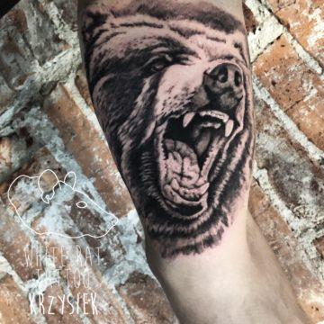Krzysztof Jakubowski Studio Tatuażu Warszawa White Rat Tattoo Tatuaż Niedźwiedzia