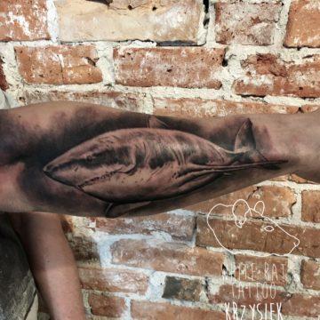 Krzysztof Jakubowski Studio Tatuażu Warszawa White Rat Tattoo Tatuaż Rekin