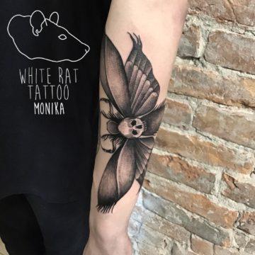 Monika Michniewicz Studio Tatuażu Warszawa White Rat Tattoo Tatuaż Ćma (2)