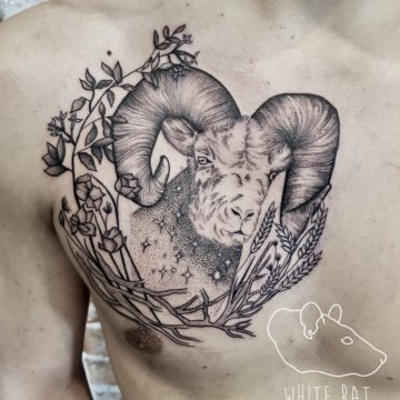 Monika Michniewicz Studio Tatuażu Warszawa White Rat Tattoo Tatuaż Kozioł (2)