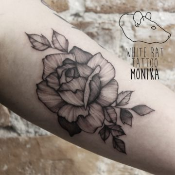 Monika Michniewicz Studio Tatuażu Warszawa White Rat Tattoo Tatuaż Róża (2)