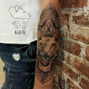 Studio tatuażu Warszawa Agata Kacperczyk tatuaż kota z mandalą
