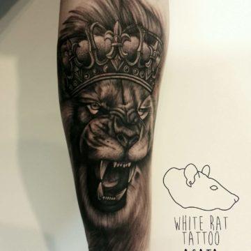 Studio tatuażu Warszawa Agata Kacperczyk tatuaż lew w koronie